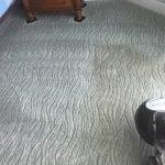 Carpet Being Cleaned- floor care gallery